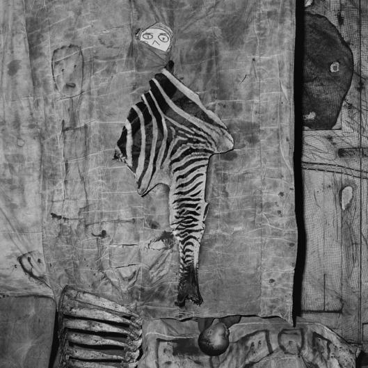 Skin and bones2007