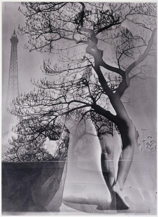 Walking Tree, 1929