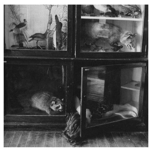 Untitled (Providence) 1975-78