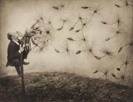 Pollination, 1998